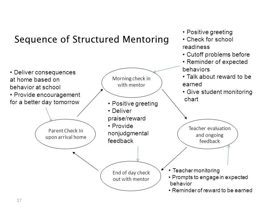 Sequence of Structured Mentoring