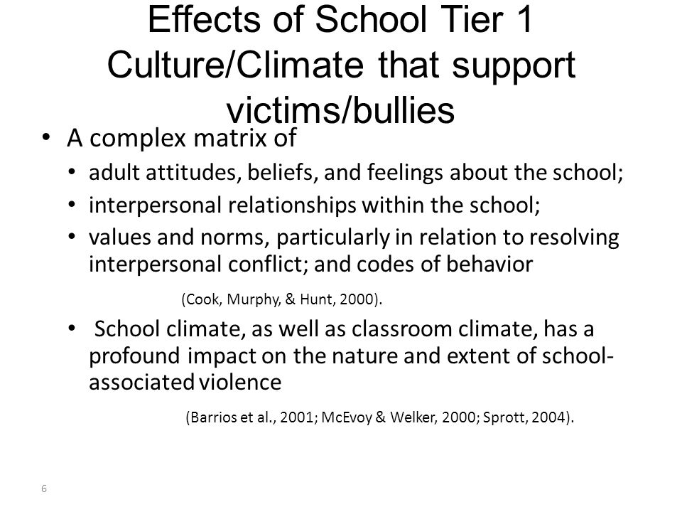 Effects of School Tier 1 Culture/Climate that support victims/bullies