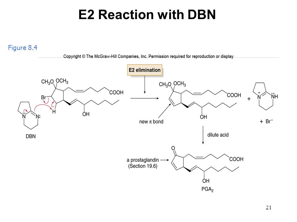 E2 Reaction with DBN Figure 8.4