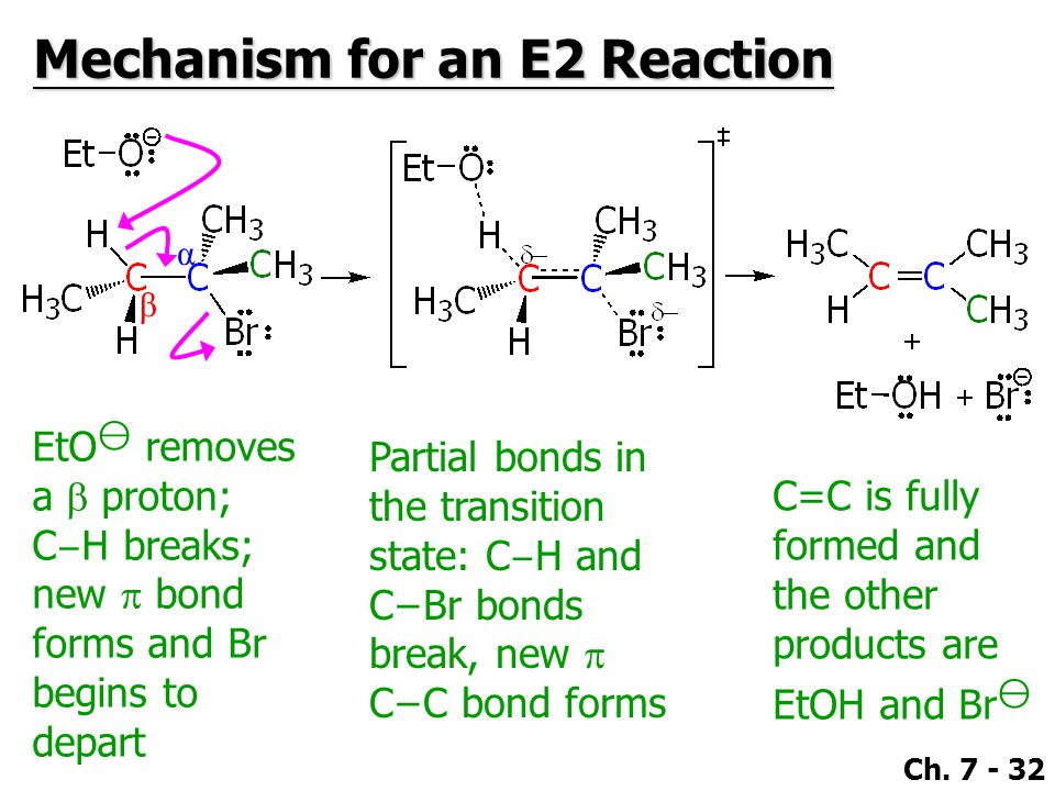 Mechanism for an E2 Reaction