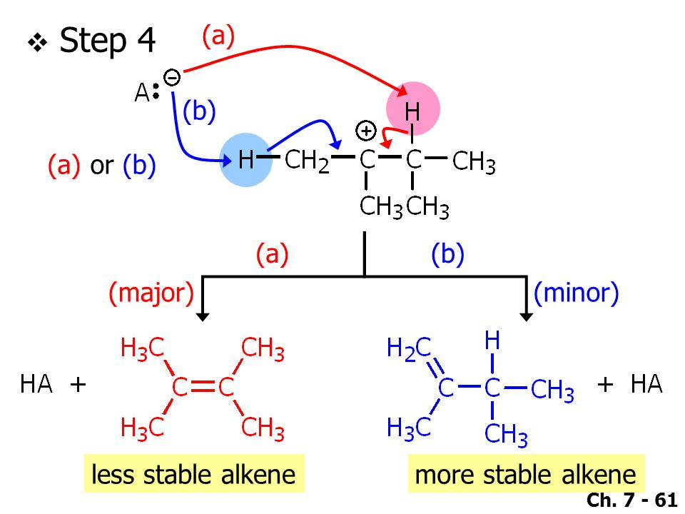 Step 4 (a) (b) (a) or (b) (a) (b) (major) (minor) less stable alkene