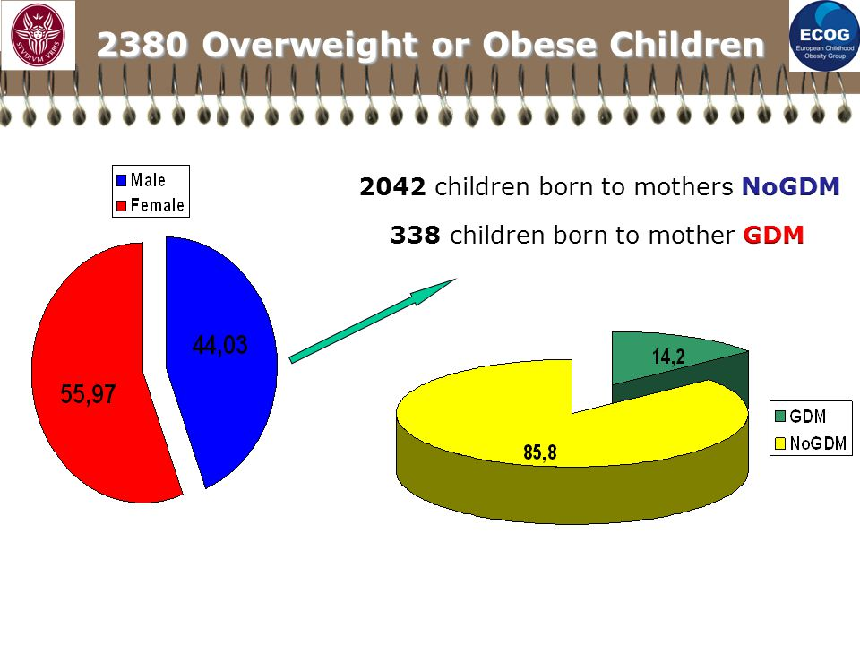 2380 Overweight or Obese Children