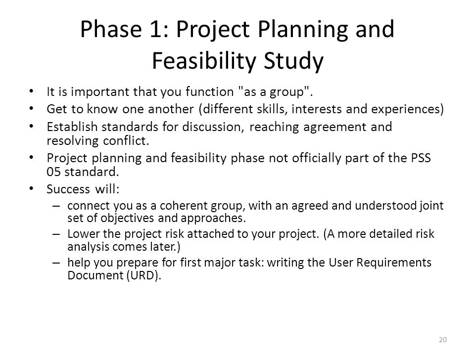 Phase 1: Project Planning and Feasibility Study