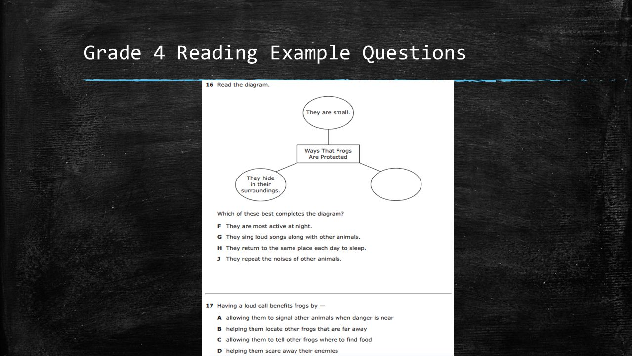 Grade 4 Reading Example Questions