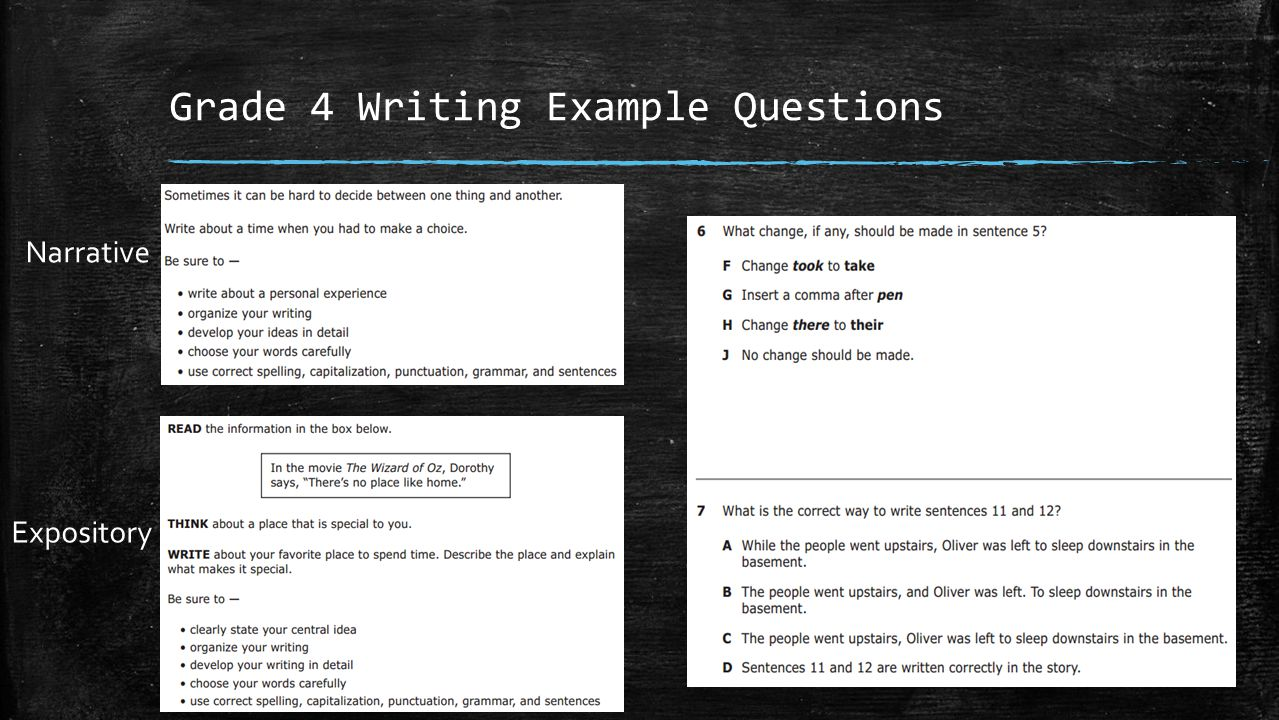 Grade 4 Writing Example Questions