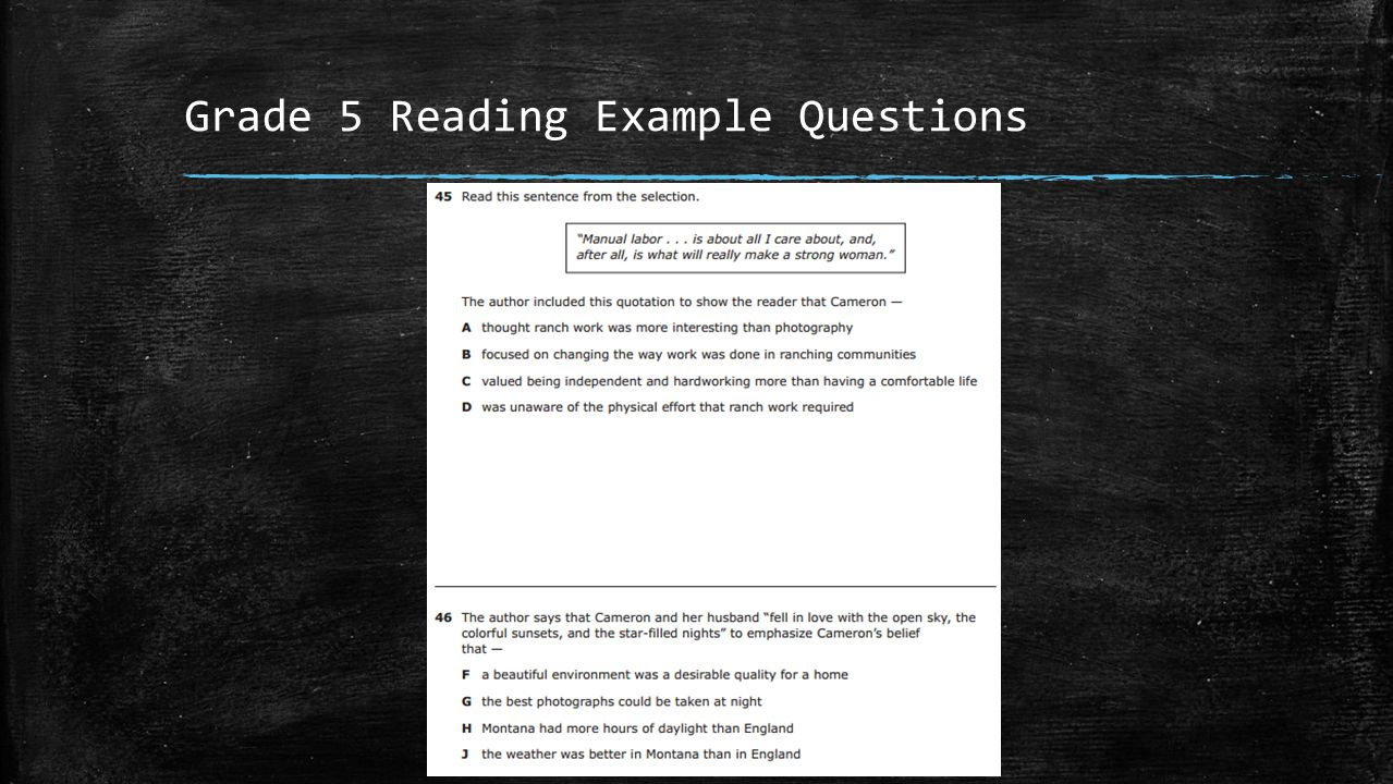 Grade 5 Reading Example Questions