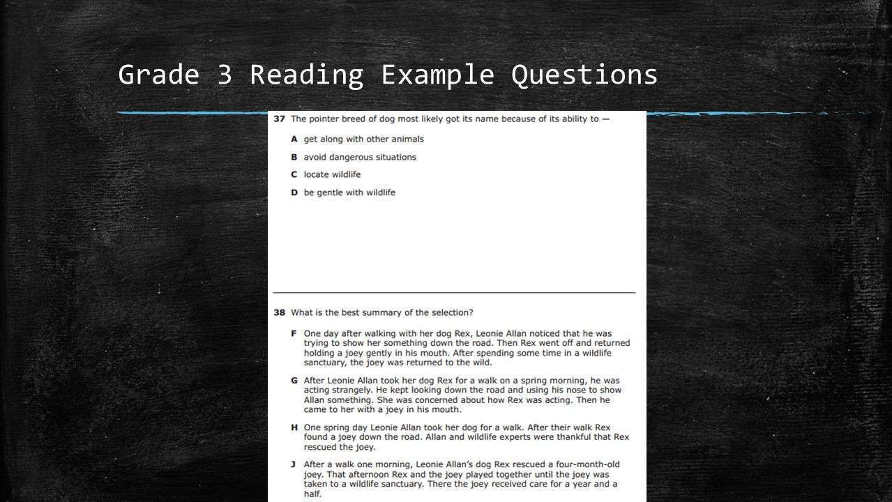 Grade 3 Reading Example Questions