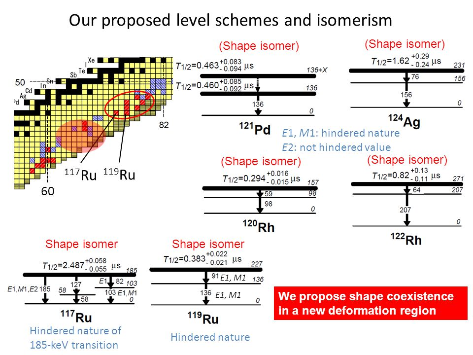 Our proposed level schemes and isomerism