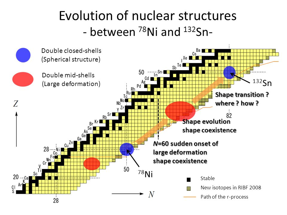 Evolution of nuclear structures - between 78Ni and 132Sn-