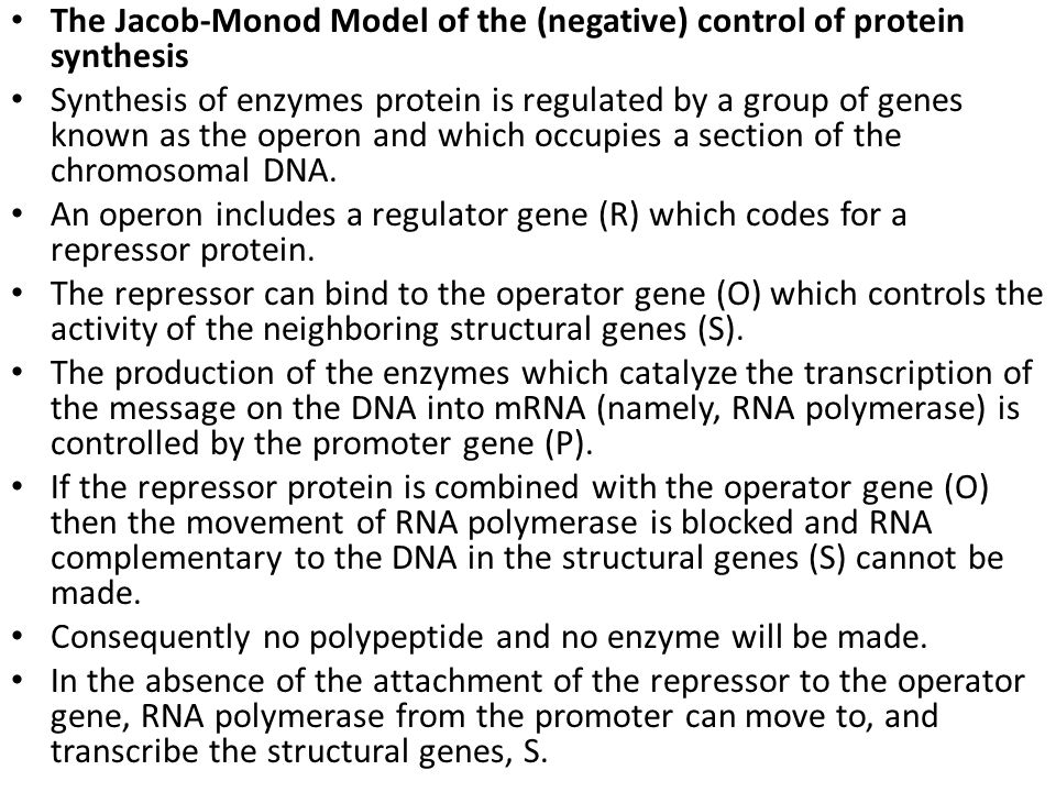 The Jacob-Monod Model of the (negative) control of protein synthesis