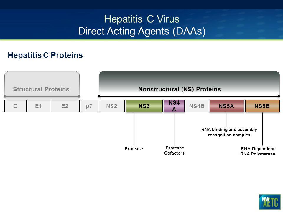 Hepatitis C Virus Direct Acting Agents (DAAs)