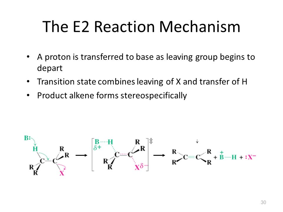The E2 Reaction Mechanism