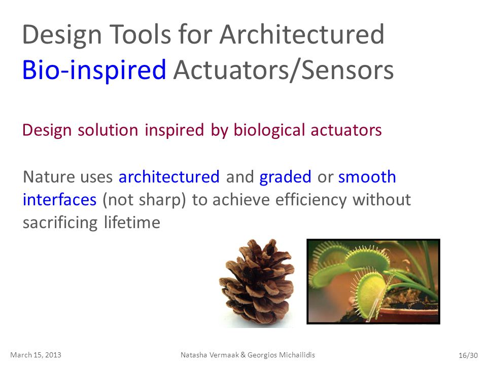 Design solution inspired by biological actuators