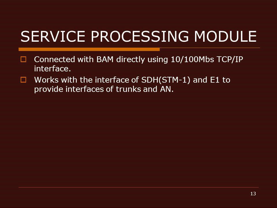 SERVICE PROCESSING MODULE