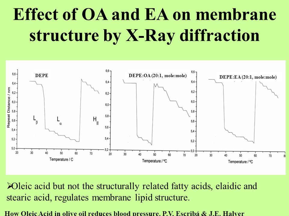 Effect of OA and EA on membrane structure by X-Ray diffraction