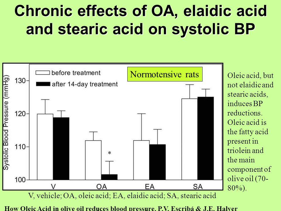 Chronic effects of OA, elaidic acid and stearic acid on systolic BP