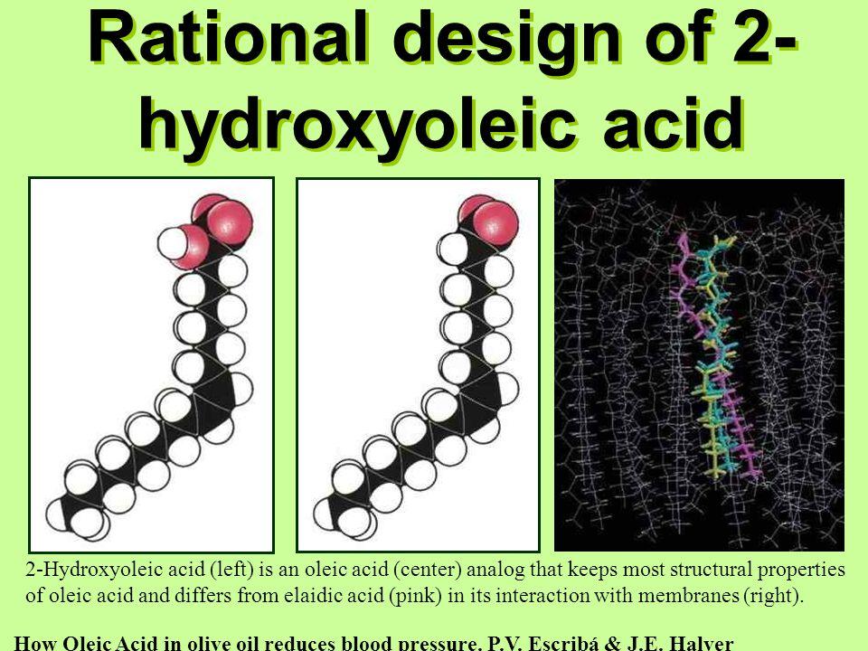 Rational design of 2-hydroxyoleic acid