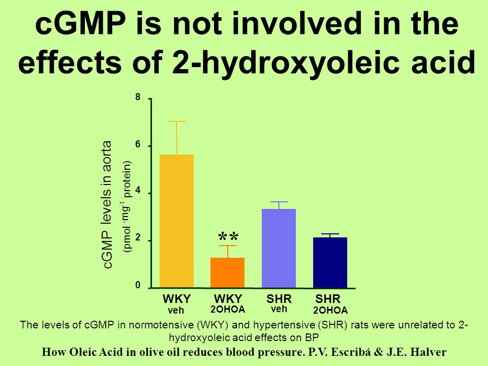 cGMP is not involved in the effects of 2-hydroxyoleic acid