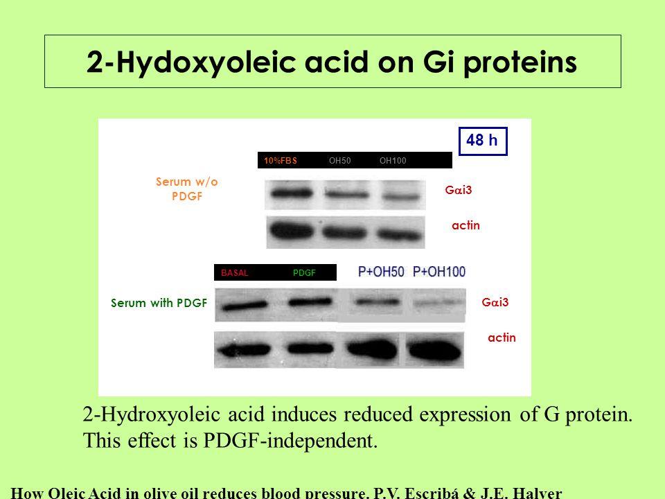 2-Hydoxyoleic acid on Gi proteins
