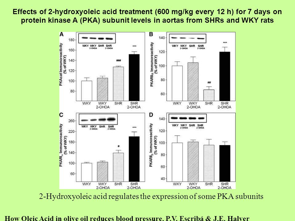 2-Hydroxyoleic acid regulates the expression of some PKA subunits