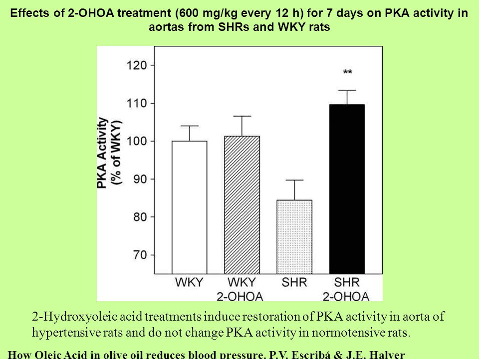 hypertensive rats and do not change PKA activity in normotensive rats.