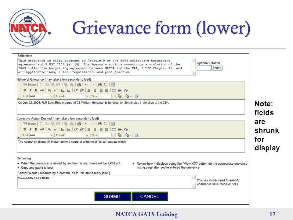 Grievance form (lower)