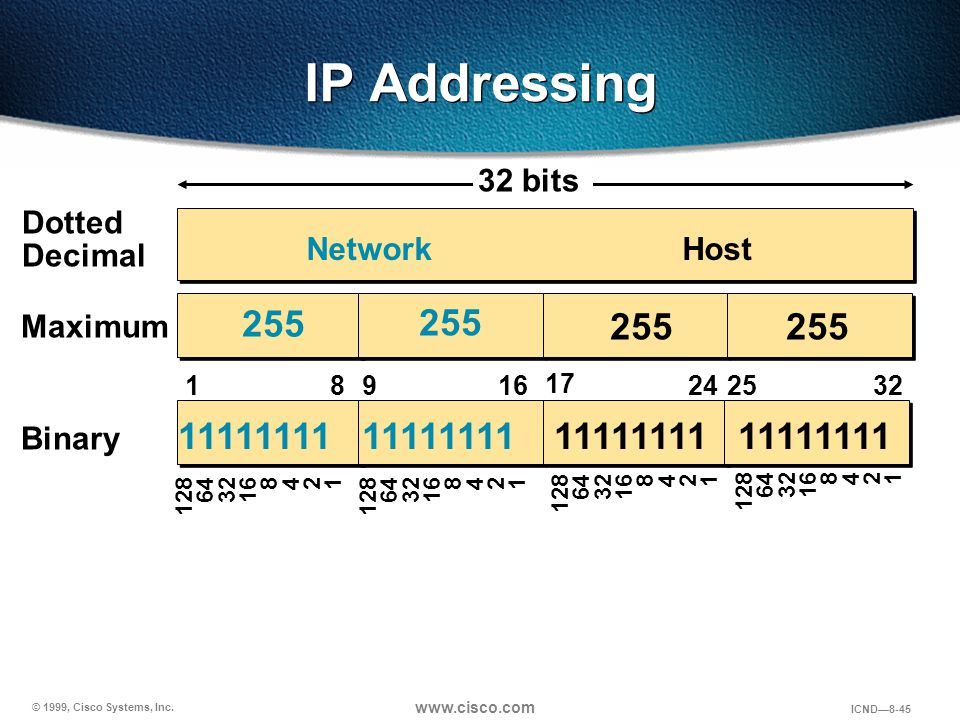IP Addressing 32 bits. Dotted Decimal. Network. Host. 255. 255. 255. 255. Maximum. 1. 8. 9.