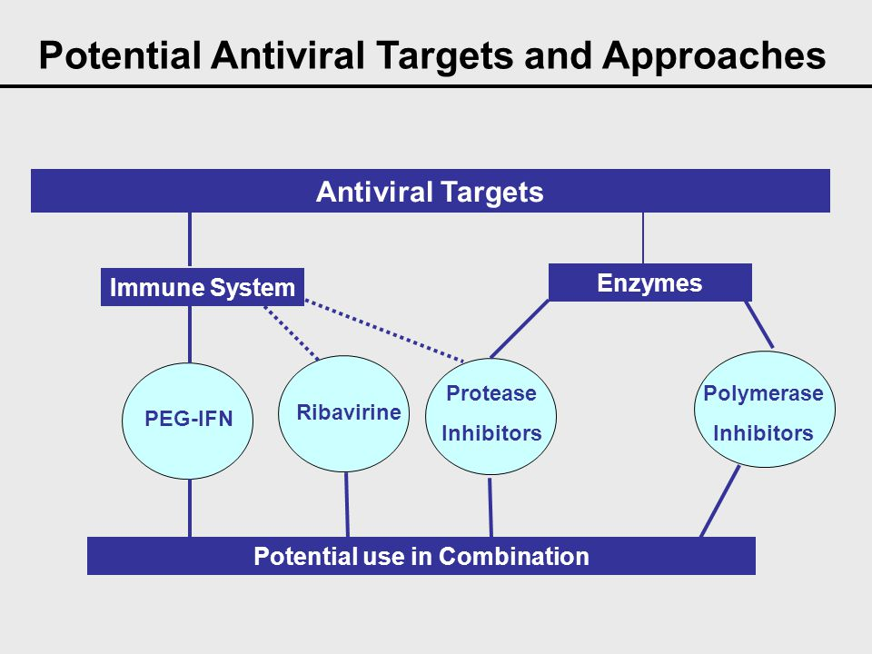 Potential Antiviral Targets and Approaches