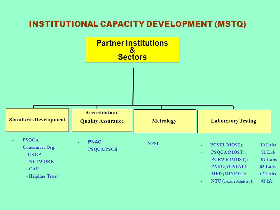 INSTITUTIONAL CAPACITY DEVELOPMENT (MSTQ) Standards Development