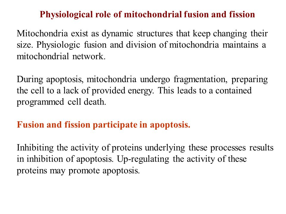Physiological role of mitochondrial fusion and fission
