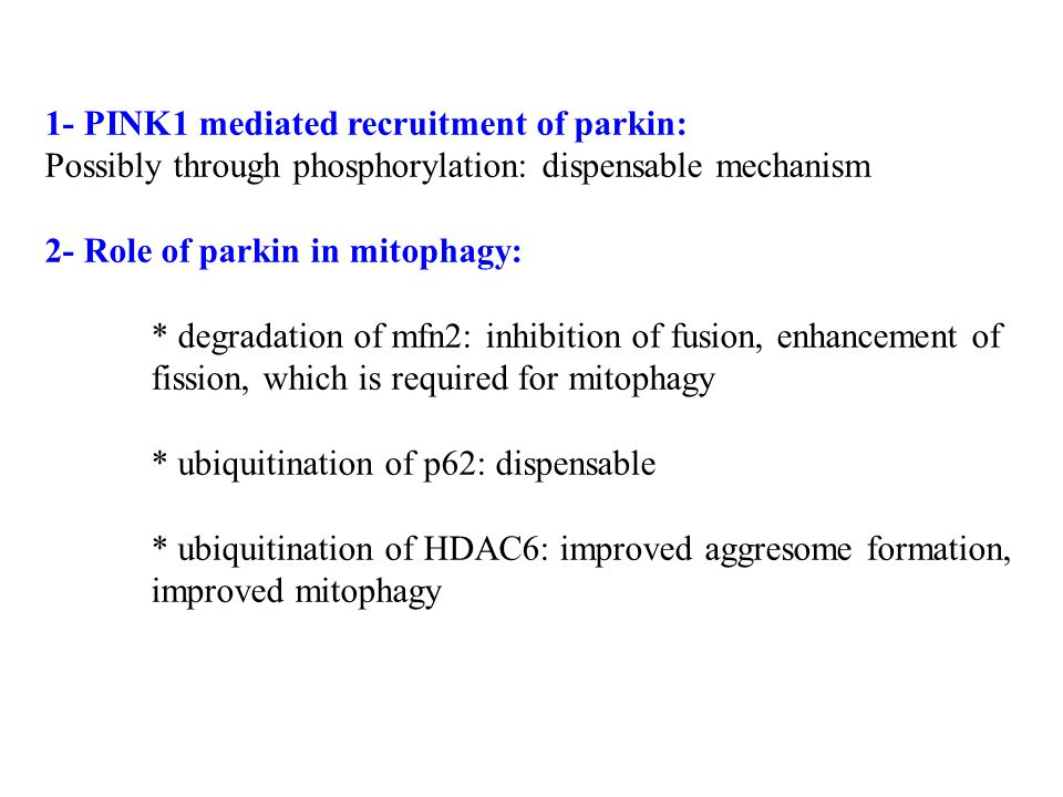 1- PINK1 mediated recruitment of parkin: