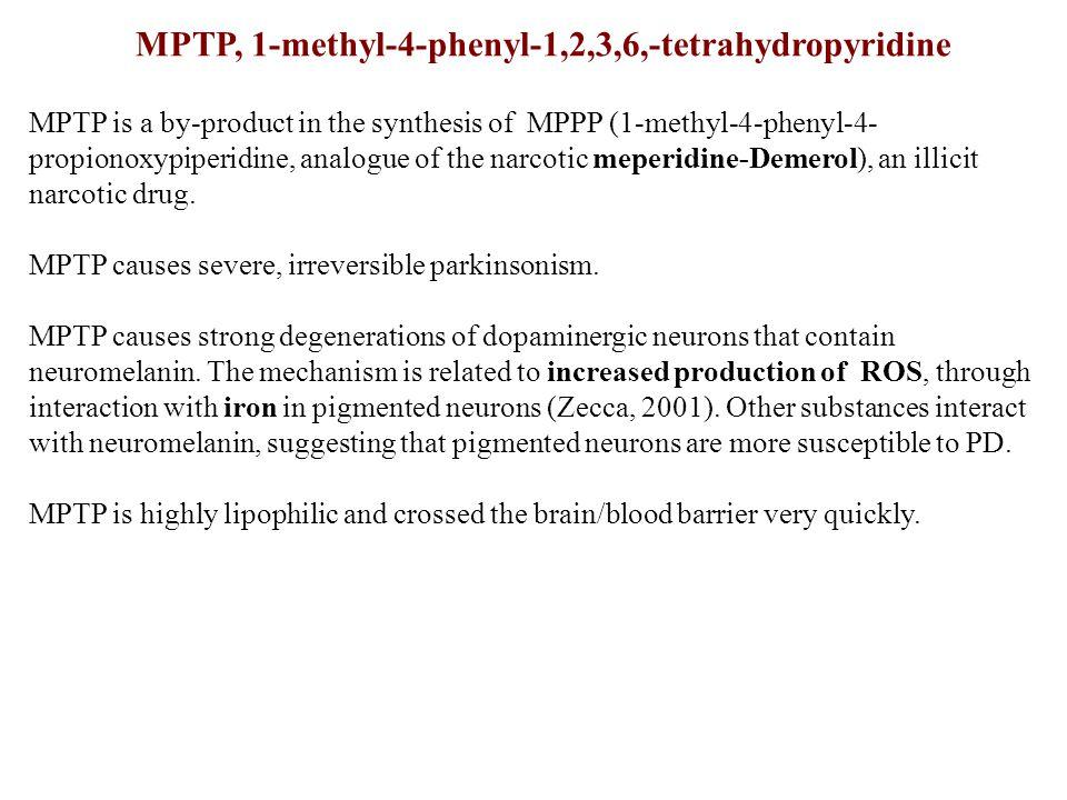 MPTP, 1-methyl-4-phenyl-1,2,3,6,-tetrahydropyridine