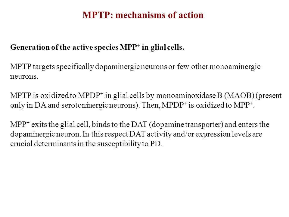 MPTP: mechanisms of action