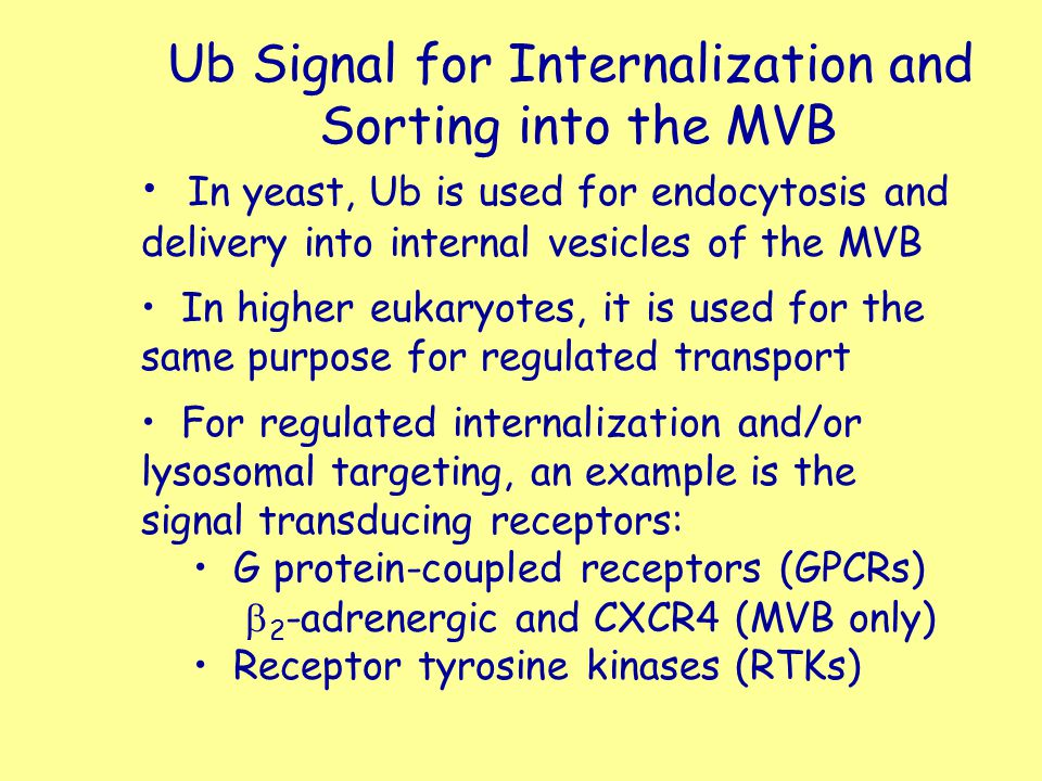 Ub Signal for Internalization and