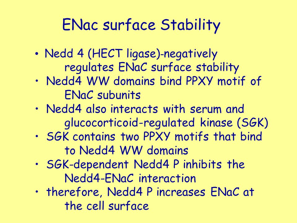 ENac surface Stability