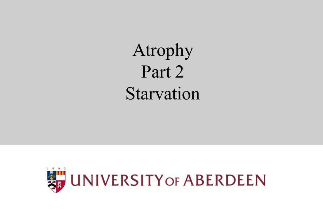 Atrophy Part 2 Starvation