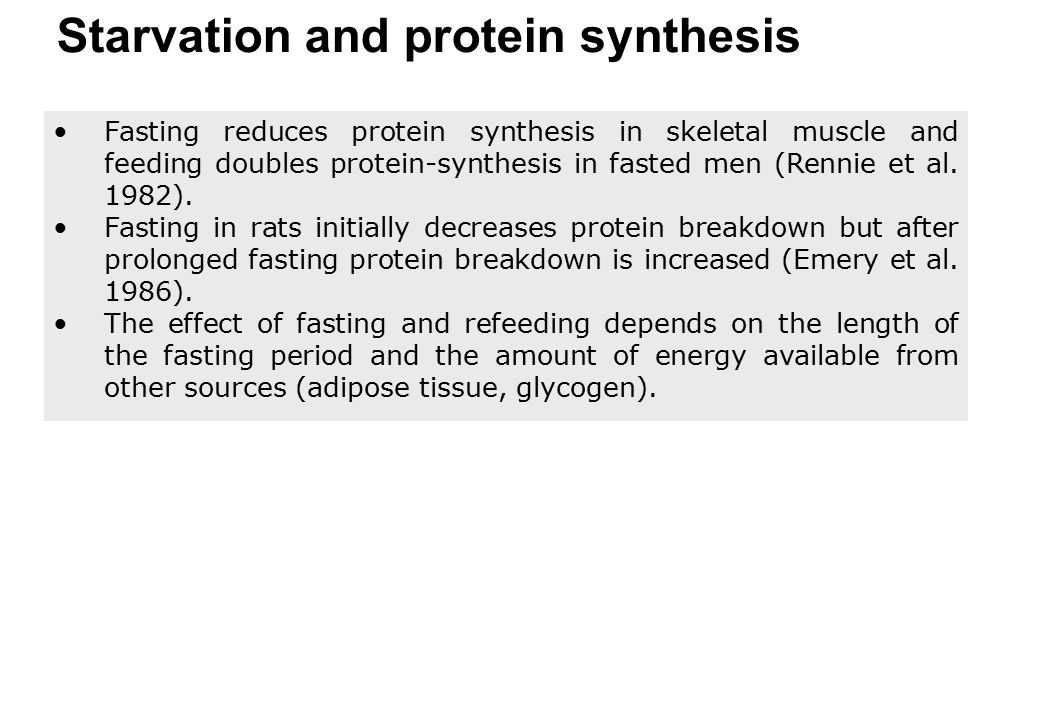 Starvation and protein synthesis
