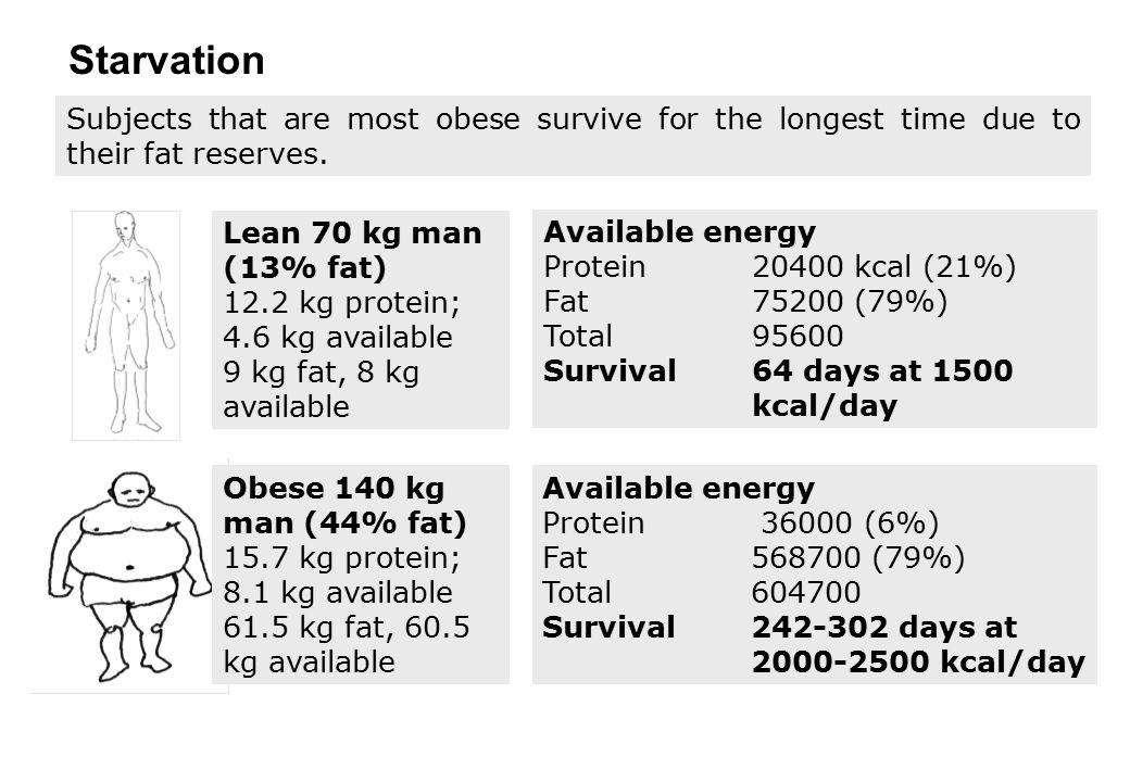 Starvation Subjects that are most obese survive for the longest time due to their fat reserves. Lean 70 kg man (13% fat)