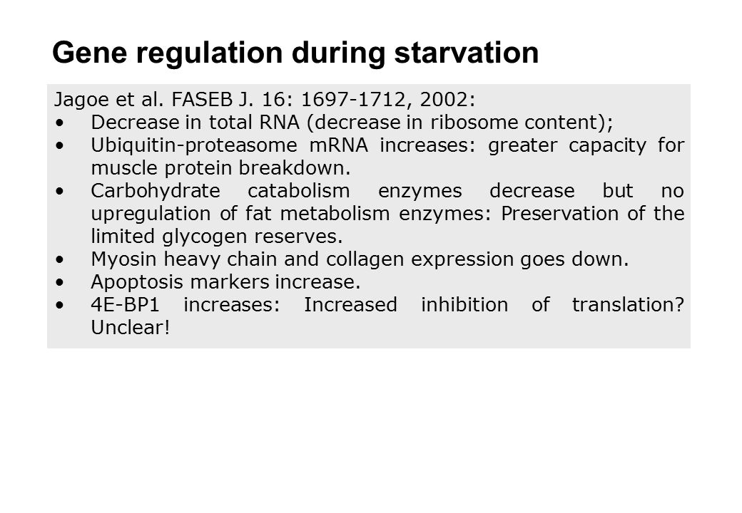 Gene regulation during starvation
