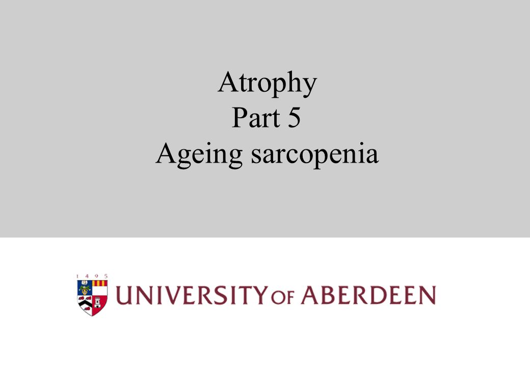 Atrophy Part 5 Ageing sarcopenia