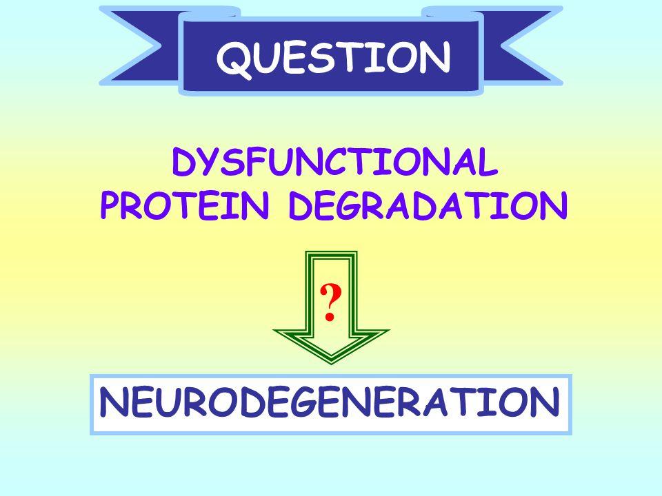 QUESTION DYSFUNCTIONAL PROTEIN DEGRADATION NEURODEGENERATION