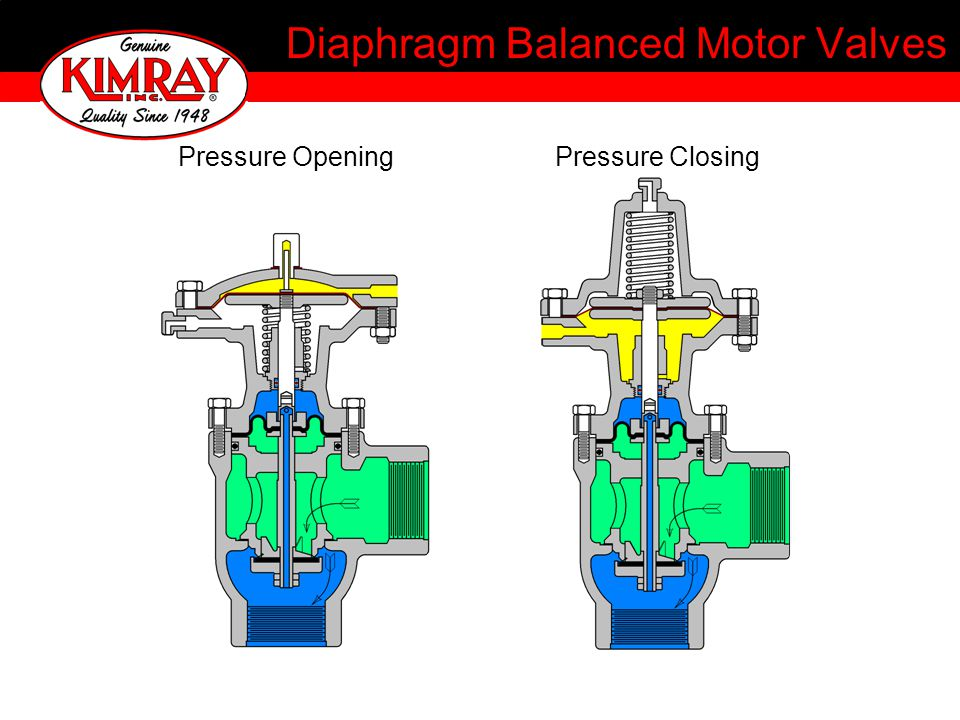 Diaphragm Balanced Motor Valves