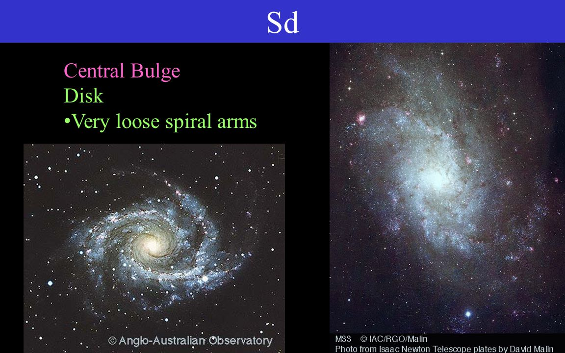 Sd Central Bulge Disk Very loose spiral arms