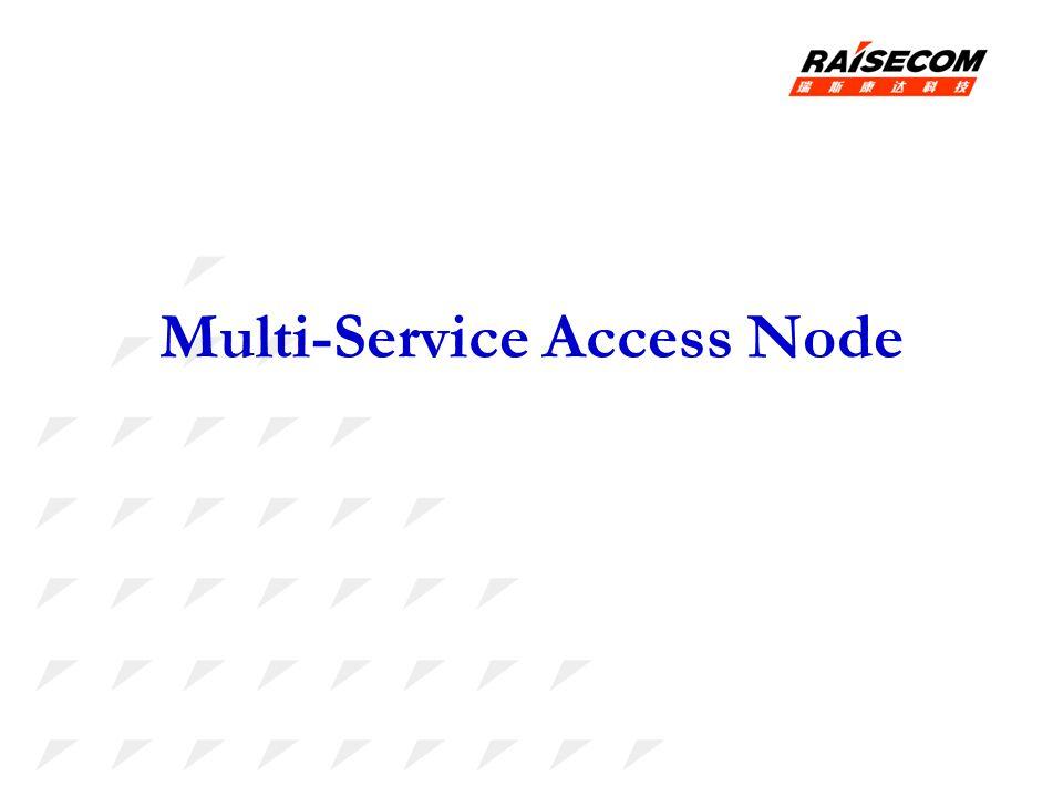 Multi-Service Access Node