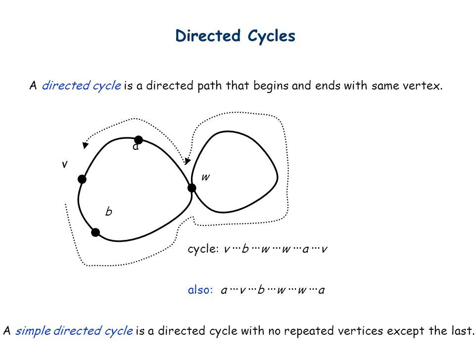Directed Cycles A directed cycle is a directed path that begins and ends with same vertex. w. v. a.