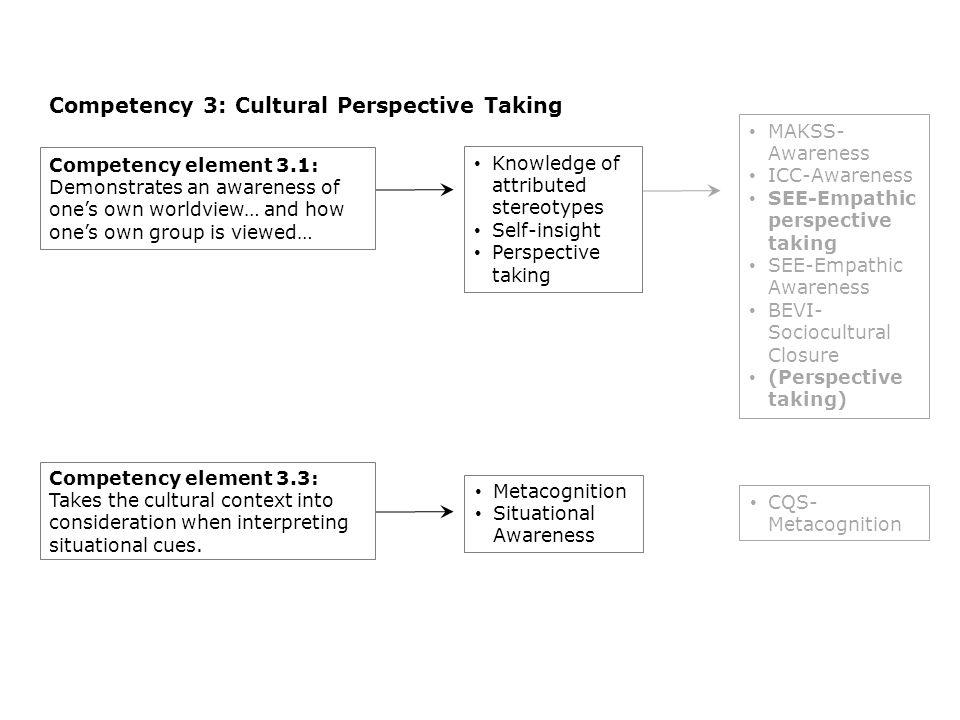Competency 3: Cultural Perspective Taking