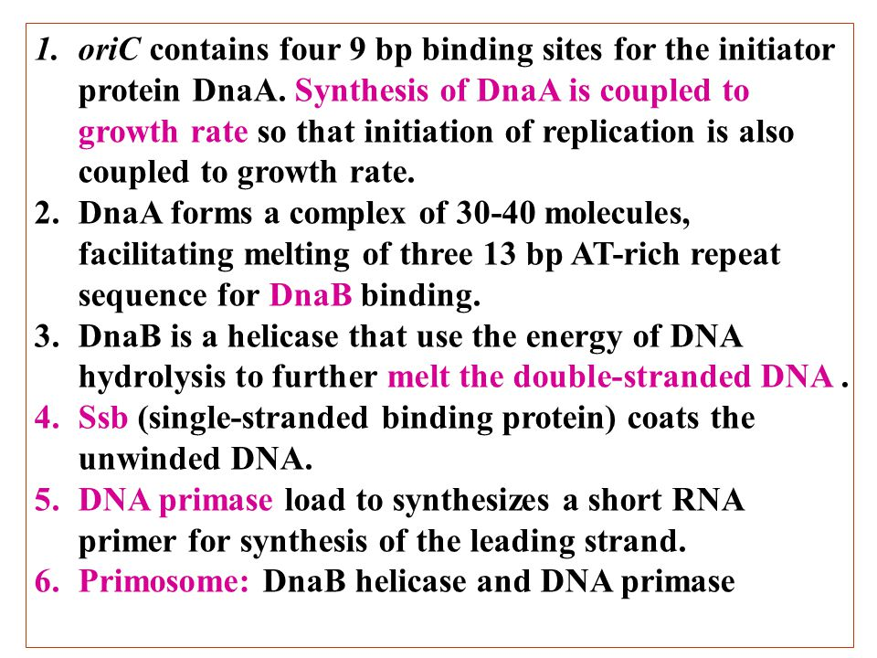 oriC contains four 9 bp binding sites for the initiator protein DnaA