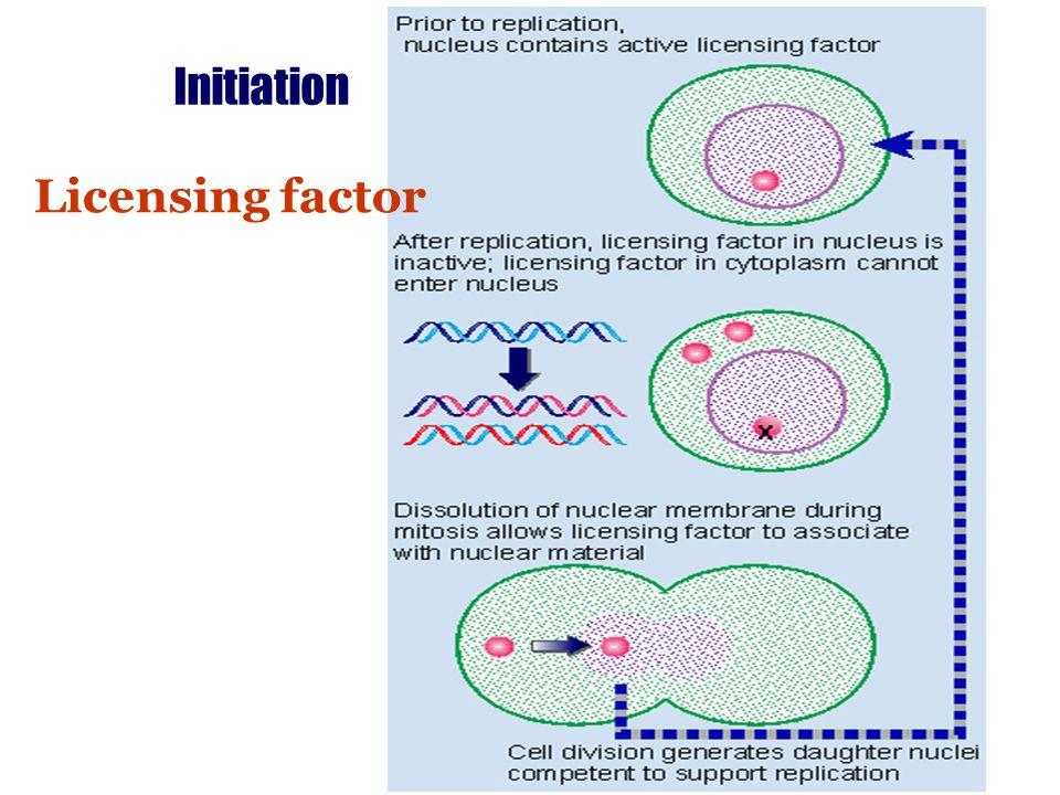 Initiation Licensing factor