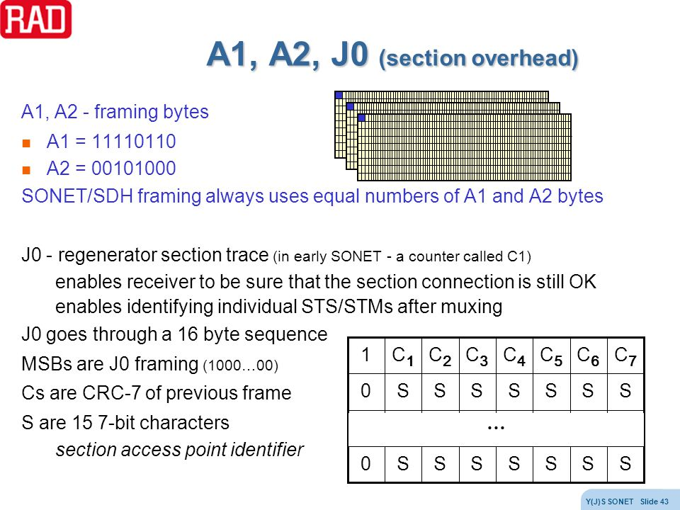 A1, A2, J0 (section overhead)