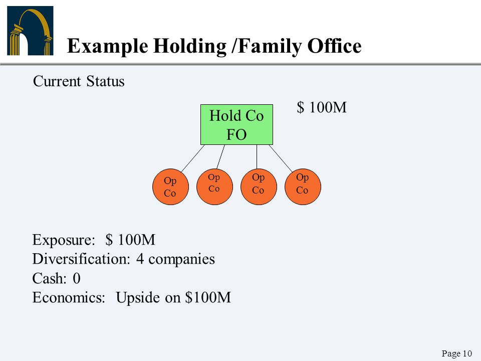 Example Holding /Family Office